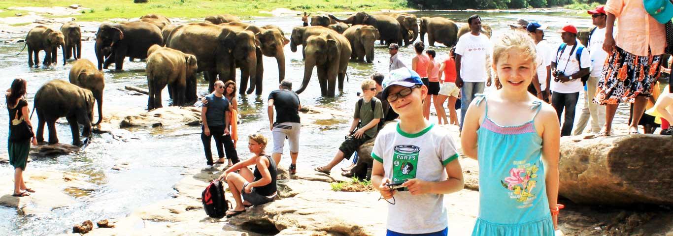 sri-lanka-elephant-watching-2